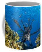 Lionfish Foraging Amongst Corals Coffee Mug