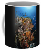 Lionfish, Indonesia Coffee Mug