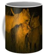Lions At Night Coffee Mug