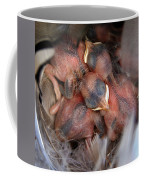 Little Bird Dreams Coffee Mug