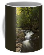 Little Carp River Falls 3 Coffee Mug