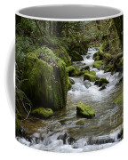 Little Creek 2 Coffee Mug