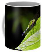Little Green Wings Two Coffee Mug