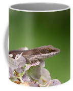 Little Komodo Coffee Mug