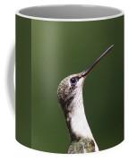 Little Princess - Hummingbird Coffee Mug