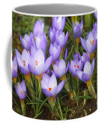 Little Purple Crocuses Coffee Mug