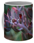 Little Red Blossoms Coffee Mug