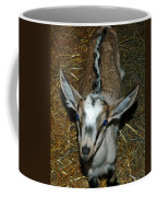 Little Stinker Skunk Back Kid Coffee Mug