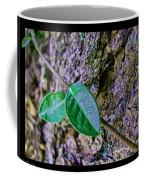 Little Vine Coffee Mug