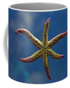 Live Starfish Coffee Mug