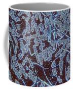 Liverwort Sporogenesis Lm Coffee Mug