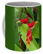 Lobster Claw Heliconia Coffee Mug