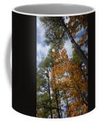 Lofty Coffee Mug