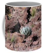 Lone Agave Coffee Mug