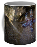 Lone Seastar Coffee Mug