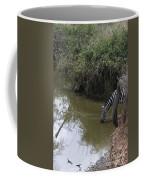 Lone Zebra At The Drinking Hole Coffee Mug