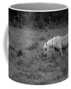 Lonesome Pony Coffee Mug