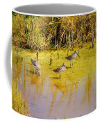 Long Billed Dowitchers Migrating Coffee Mug