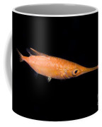 Longfin Snipefish Coffee Mug