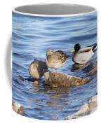 Look One Leg  Coffee Mug