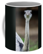 Looking At You Coffee Mug