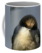 Looking Fuzzy Coffee Mug