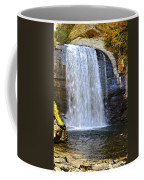 Looking Glass Falls Coffee Mug by Susan Leggett