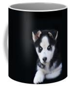 Lop Eared Siberian Husky Puppy Coffee Mug