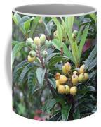 Loquats In The Rain Coffee Mug