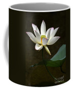Lotus Beauty Coffee Mug