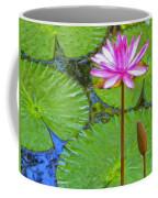 Lotus Blossom And Water Lily Pads Coffee Mug