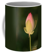 Lotus Bud Coffee Mug
