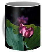 Lotus--echoes Of Light 24h Coffee Mug
