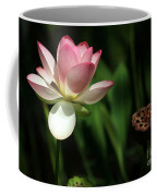 Lotus Opening To The Sun Coffee Mug