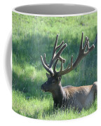 Lounging Elk Coffee Mug