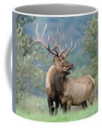 Love Coffee Mug by Craig Leaper