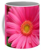 Love Daisy Coffee Mug