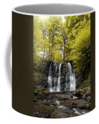 Low Angle View Of A Waterfall In A Coffee Mug