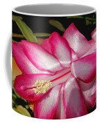 Luminous Cactus Flower Coffee Mug
