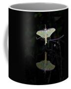 Luna Moth And Reflection Coffee Mug