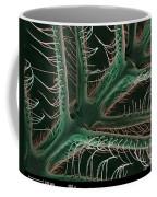 Luna Moth Antennae, Sem Coffee Mug