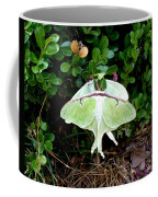 Luna Moths' Afternoon Delight Coffee Mug