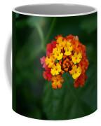 Macro Joy Coffee Mug