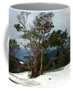 Madrone On Young Hill Coffee Mug