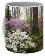 Magical Azaleas At Callaway Botanical Gardens Coffee Mug