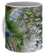 Magical Falls H Coffee Mug