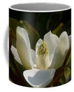 Magnificent Alabama Magnolia Blossom Coffee Mug