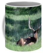 Magnificent Coffee Mug