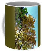 Magnificent Maples Coffee Mug
