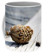 Magnolia Cone Coffee Mug